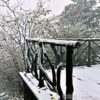 Winter at Zhangjiajie is still scenic